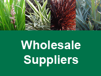 Where to Buy Foliage First Range - Wholesale