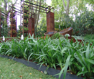 EMERALD ARCH® Dianella suits mass plantings, specimen plantings and low water gardens