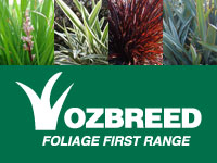 Where to Buy Foliage First Range