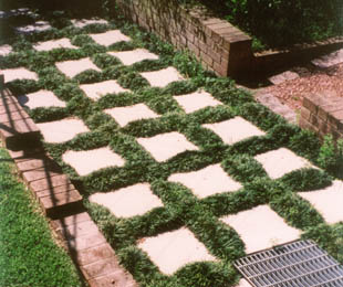 Instant Border Between Pavers