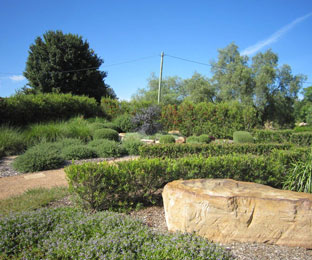 More Green, Less Labour for Landscape Contractors, Architects and Home Gardeners