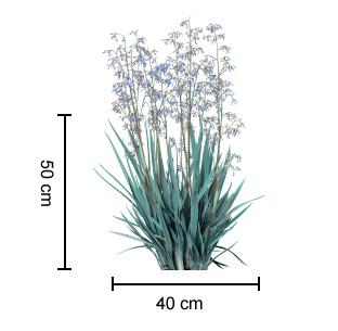 CASSA BLUE® Dianella dimensions