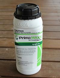 2165-Primo-Maxx-small_1000x1000-600x600