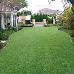 empire-lawn