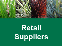 foliage-first-retail