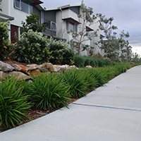 Maintaining Turf and Gardens in Times of Drought and Water Restrictions