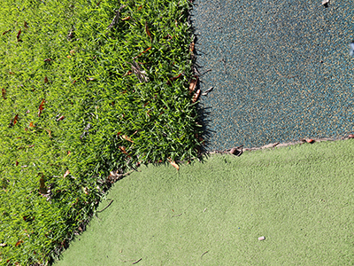 Turf, Rubber and Artificial Turf Surface Comparisons