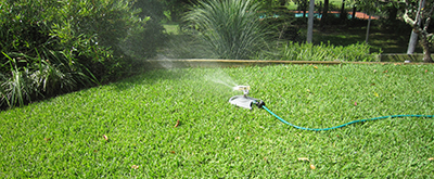 Lawn Care Videos from Ozbreed
